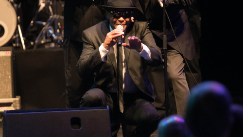 Peralada es rendeix davant el rhythm and blues de The Original Blues Brothers Band